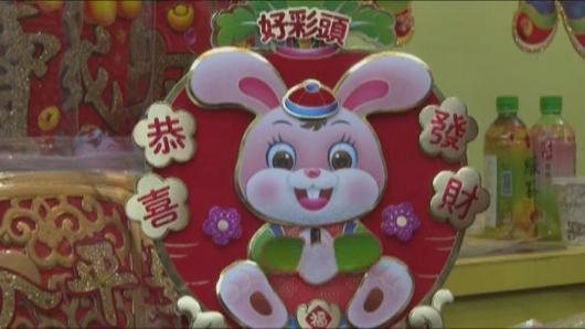 华人采购年货忙 纽约玉兔迎新春