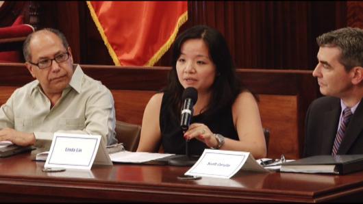 纽约亚裔人口激增 市议会选区重划引关注