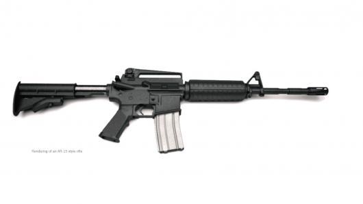 枪支问题成美国民主失灵缩影 控枪有多难?