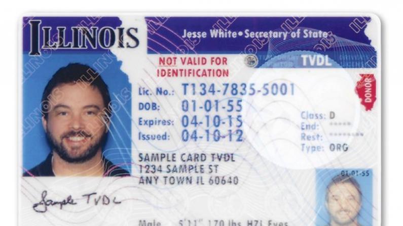 伊州非法移民考取驾照法案11月启动 公布申请细则