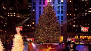 人潮涌动 万众期盼 洛克菲勒中心圣诞树点灯