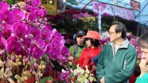 香港年宵花市吸引大批民众前往