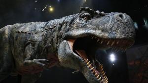 大型恐龙展7/16巴克莱中心上演  恐龙世界栩栩如生