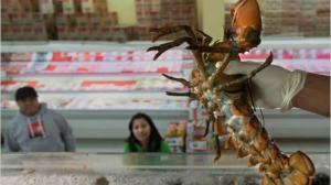 联邦食品进口听证会:加州华裔商会反映亚洲食品进口难