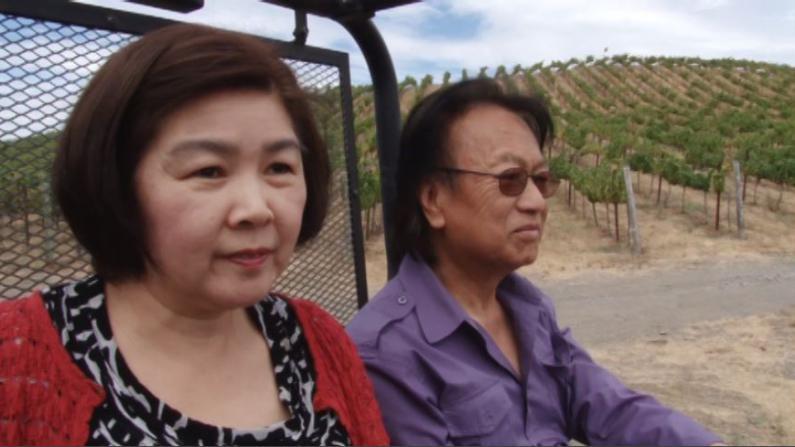 加州纳帕华裔酒商:葡萄酒价格受地震影响不大