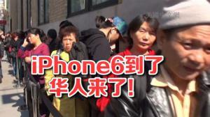 纽约华人都在抢iPhone6 !黄牛代购瞄准中国市场