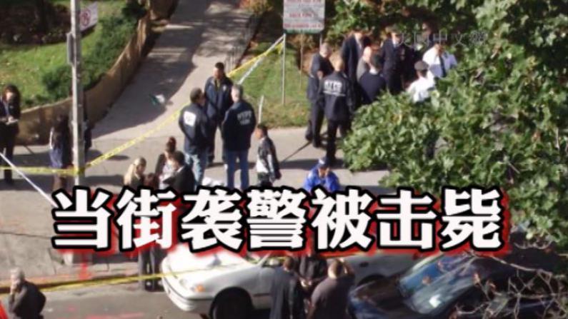 法拉盛29岁男子街头袭警 被击毙