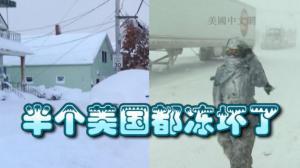 初冬全美气温骤降至38年新低 半数州郡被大雪笼罩