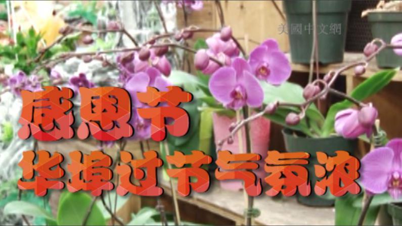 华裔社区过节气氛浓  商家生意红火
