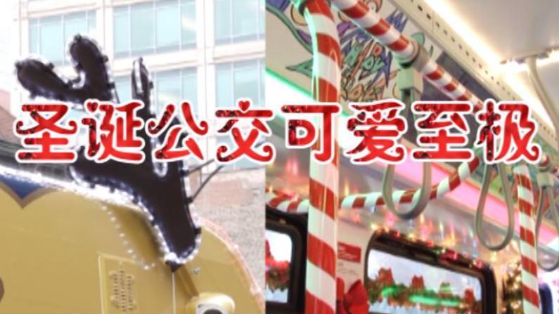 圣诞公交惊喜亮相芝加哥街头  载浓郁节日祝福跑遍全城