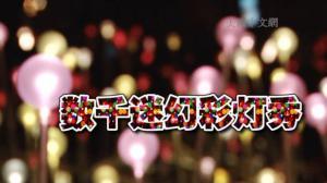 数千彩灯点亮黑夜 大型灯光艺术展亮相休斯敦