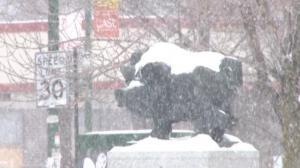 极寒大风天气持续影响中西部 芝加哥40万学生连续停课