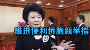 裘援平:便利侨胞入出境  让侨胞搭上中国发展快车