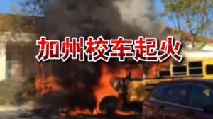 加州校车起火35名学生受威胁 女司机临危不乱避免悲剧