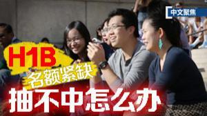 中文聚焦:H1B抽签半数不中 留学生何去何从