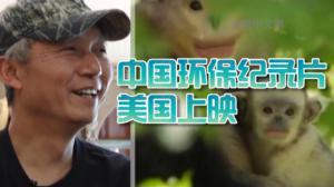 追寻滇金丝猴逾20年脚步不止 奚志农:用影像力量保护野生动物