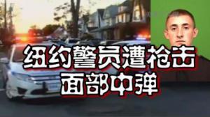 纽约皇后区一警员惨遭枪击 嫌犯曾有犯罪记录已被捕