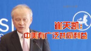 崔天凯:加强全球经济治理 中美有广泛共同利益