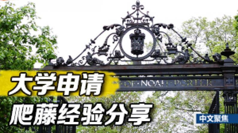 中文聚焦:大学申请系列之三 爬藤经验分享