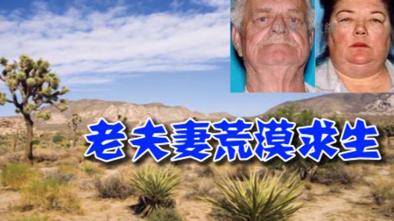 加州老夫妇开车迷路被困荒漠两周 吃野果喝雨水求生