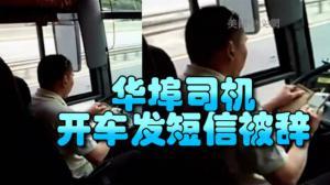 太不负责!费城华埠大巴司机开车发短信 遭乘客举报被解雇
