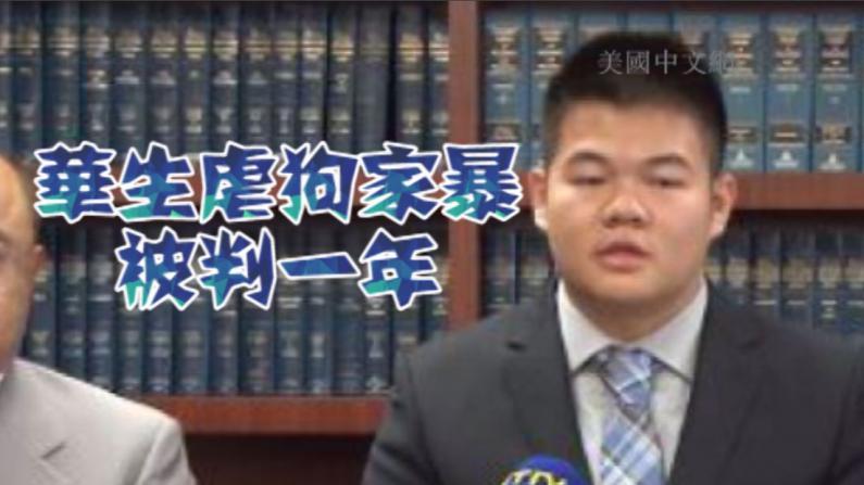 遭控虐狗家暴 中国留学生被判刑一年