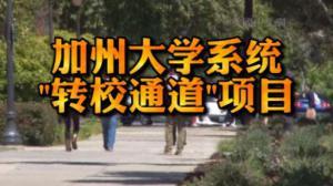 """加州大学系统开启""""转校通道""""项目 助社区学院学生顺利转读加大"""
