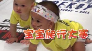 萌萌哒! 宝宝爬行大赛为纽约铁人三项比赛预热