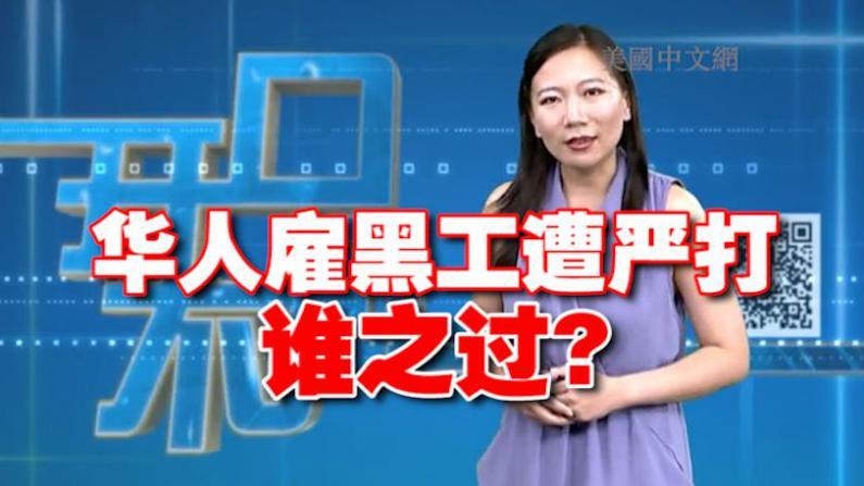 开口不凡:华人雇黑工遭严打 无证移民的罪与罚