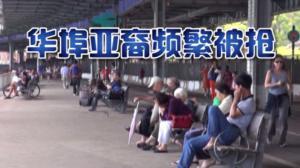 华埠针对亚裔抢案频发 民众担忧治安