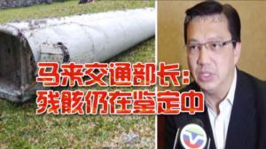 独家专访马来交通部长廖中莱 仍在鉴定残骸是否属于MH370