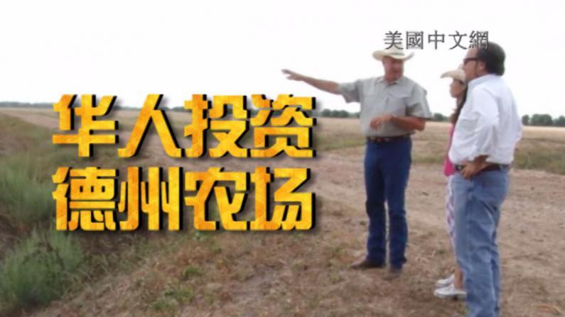 中国买家现金购德州5千英亩农田  德州地产推全套服务