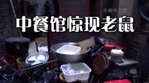 兴旺锅贴露天厨房老鼠乱窜 遭卫生局勒令关门整改