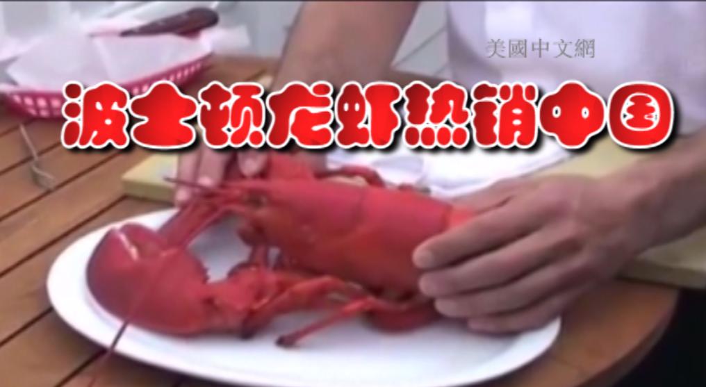 """美国龙虾走上中国饭桌 专访波士顿龙虾公司谈中国""""龙虾热"""""""