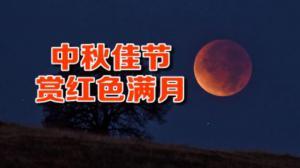 传统中秋节现天文奇景 全球各地赏超级月亮加月全食