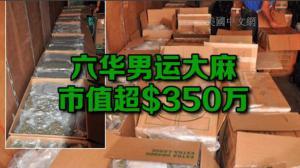 六华男皇后区运3500磅非法大麻被捕 车内还有成捆现金