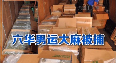 皇后区当街装卸3500磅非法大麻 6华男被捕保释金20万