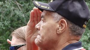 休斯敦庆祝老兵节 向退伍军人致敬