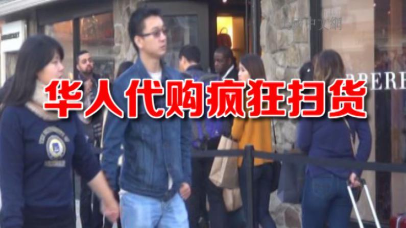 华人代购黑五横扫卖场 拖大号行李箱清空货架吓坏顾客