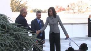 白宫喜迎宾州圣诞树  拉开圣诞假日季序幕
