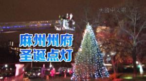 麻州州府点亮圣诞树 拉开假日季序幕