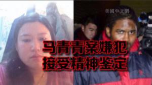 嫌犯未出现在法庭 案件延至2月11日再次开庭