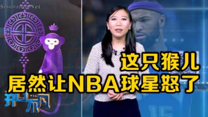 开口不凡:猴子暗讽非裔?春节纪念品遭封杀 华人猴不住了!