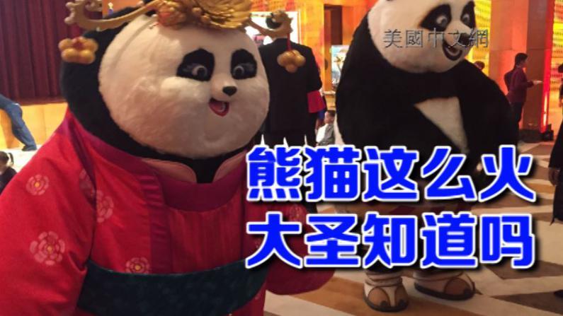 会卖萌、会演电影、会外交 论国宝熊猫的必备素养