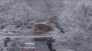 纽约突降大雪 长岛地区受影响严重