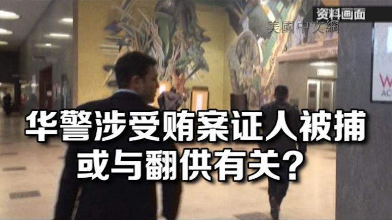 109华警涉受贿案关键证人夜潮老板被捕 控9项重罪