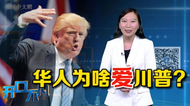 """开口不凡:华人为啥爱川普?破解""""川粉""""两大谜团"""