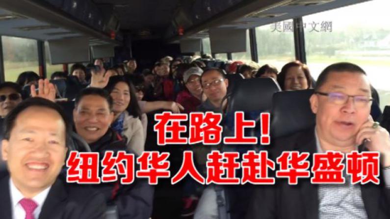 在路上!纽约华人赶赴华盛顿迎习近平