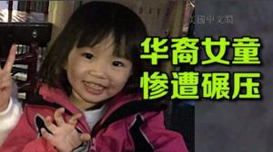 波士顿2岁华裔女童惨死救护车下