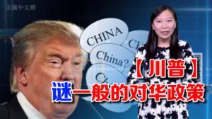 开口不凡:谜一样的存在!川普对中国态度大逆转?